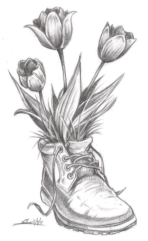 Flower drawings spring time flowers tulips boot sketch pic drawing
