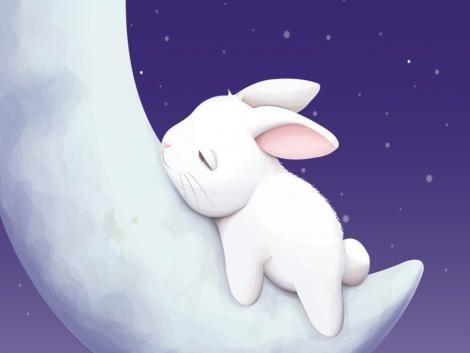 Cutie Pie Bunny 3 With Images Cute Bunny Cartoon Bunny