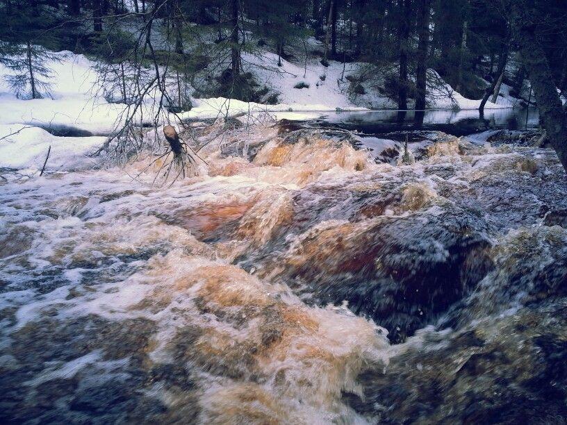 Majava joen koski