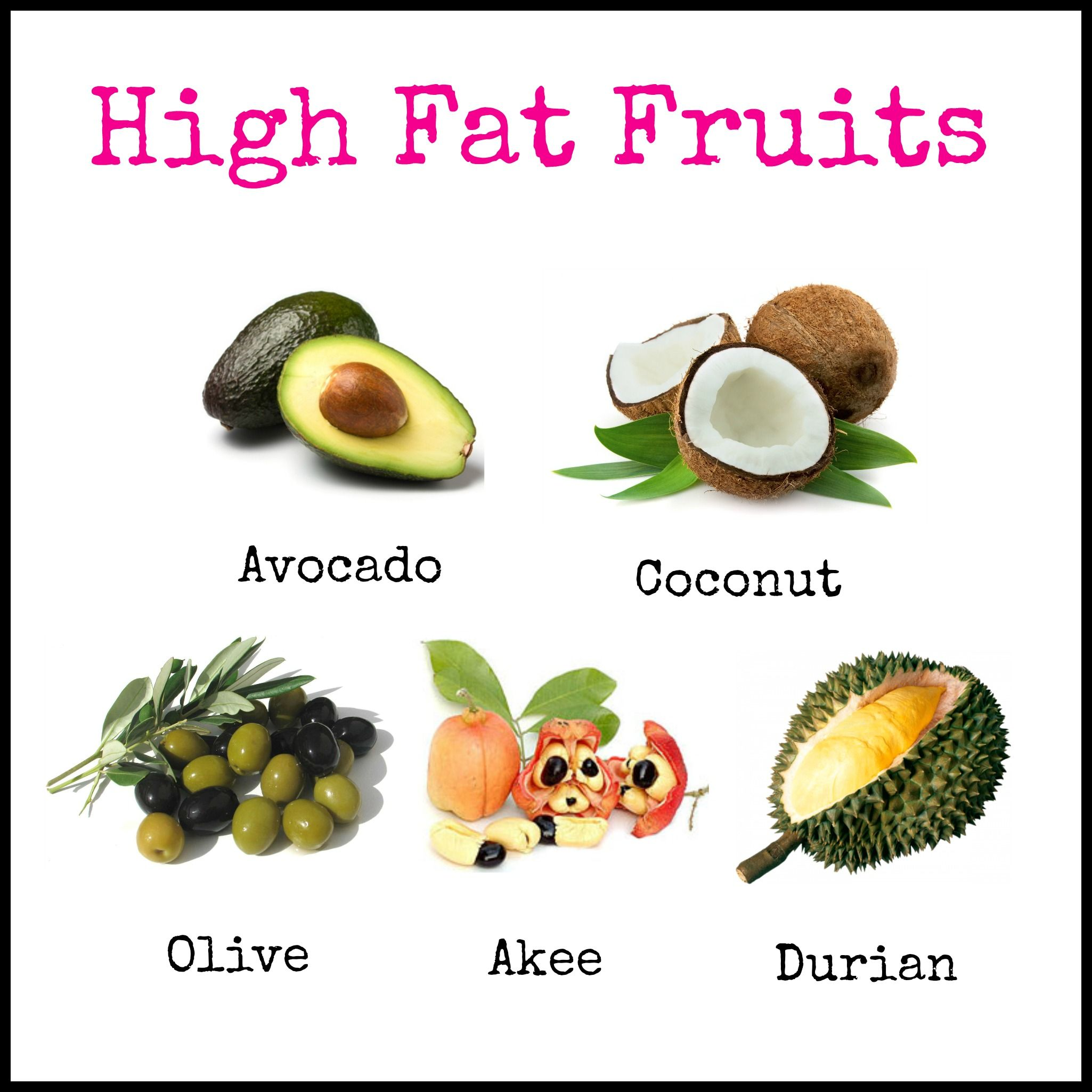 list of high fat foods pdf