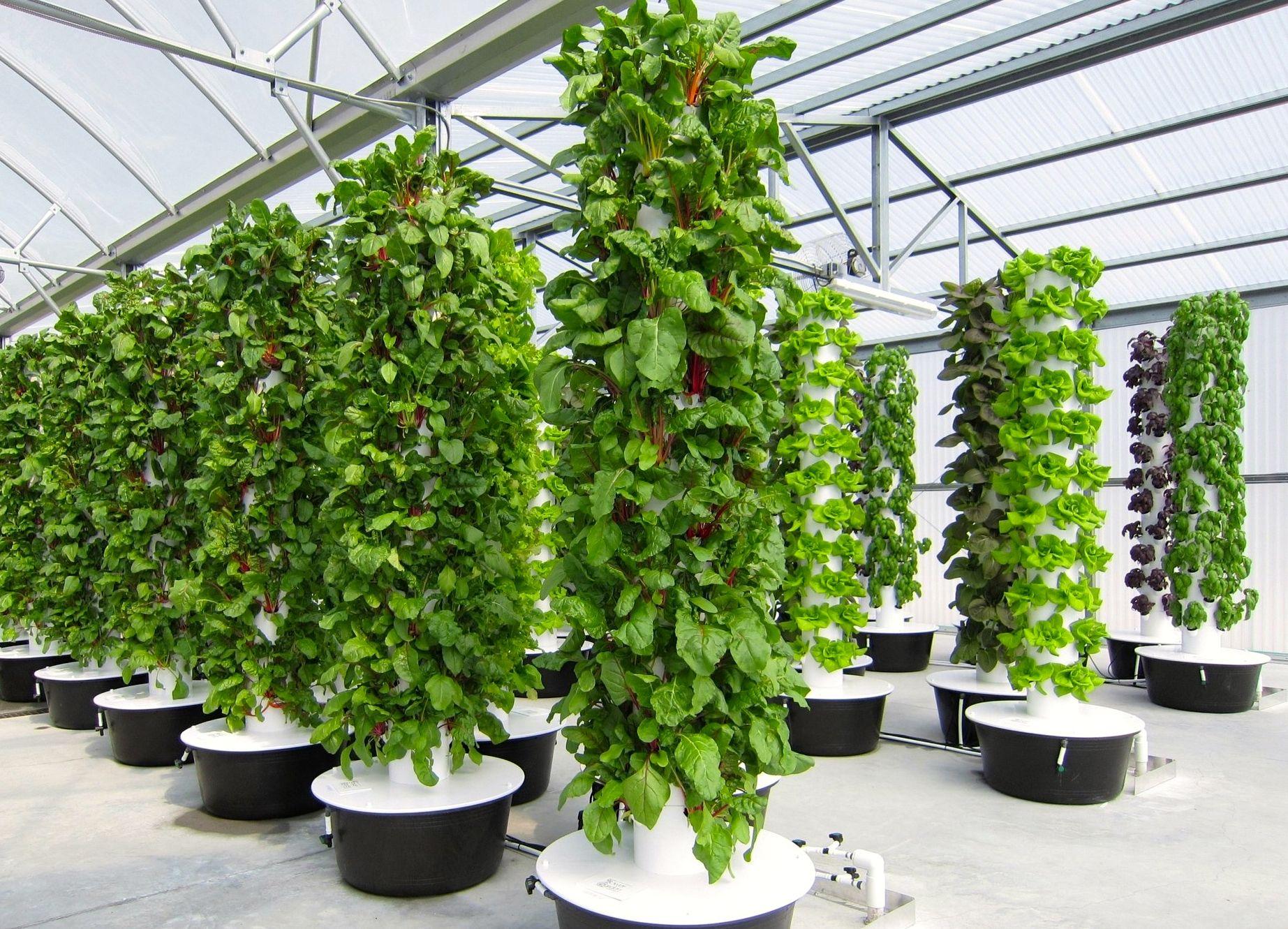 How it Works « Scissortail Farms Greenhouse farming