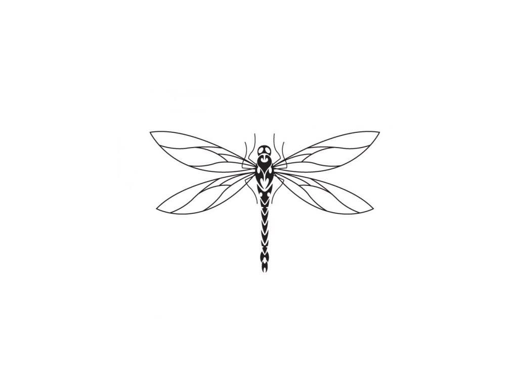 Outline Dragonfly Tattoos Designs Dragonfly Tattoo Designs
