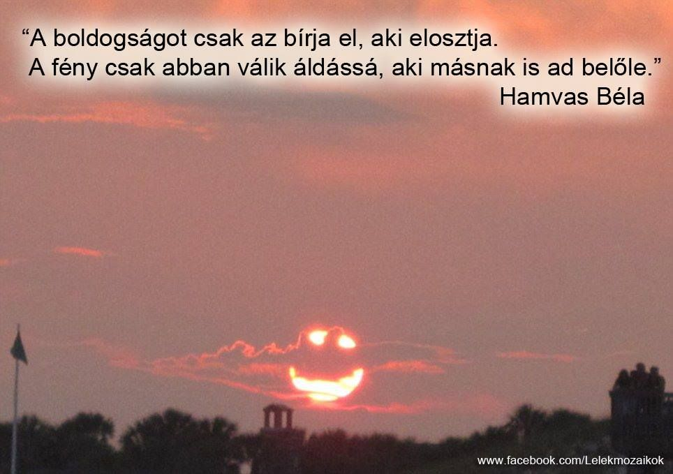 idézetek a boldogságrol Hamvas Béla idézet   Quotes, Motivational quotes, Thoughts