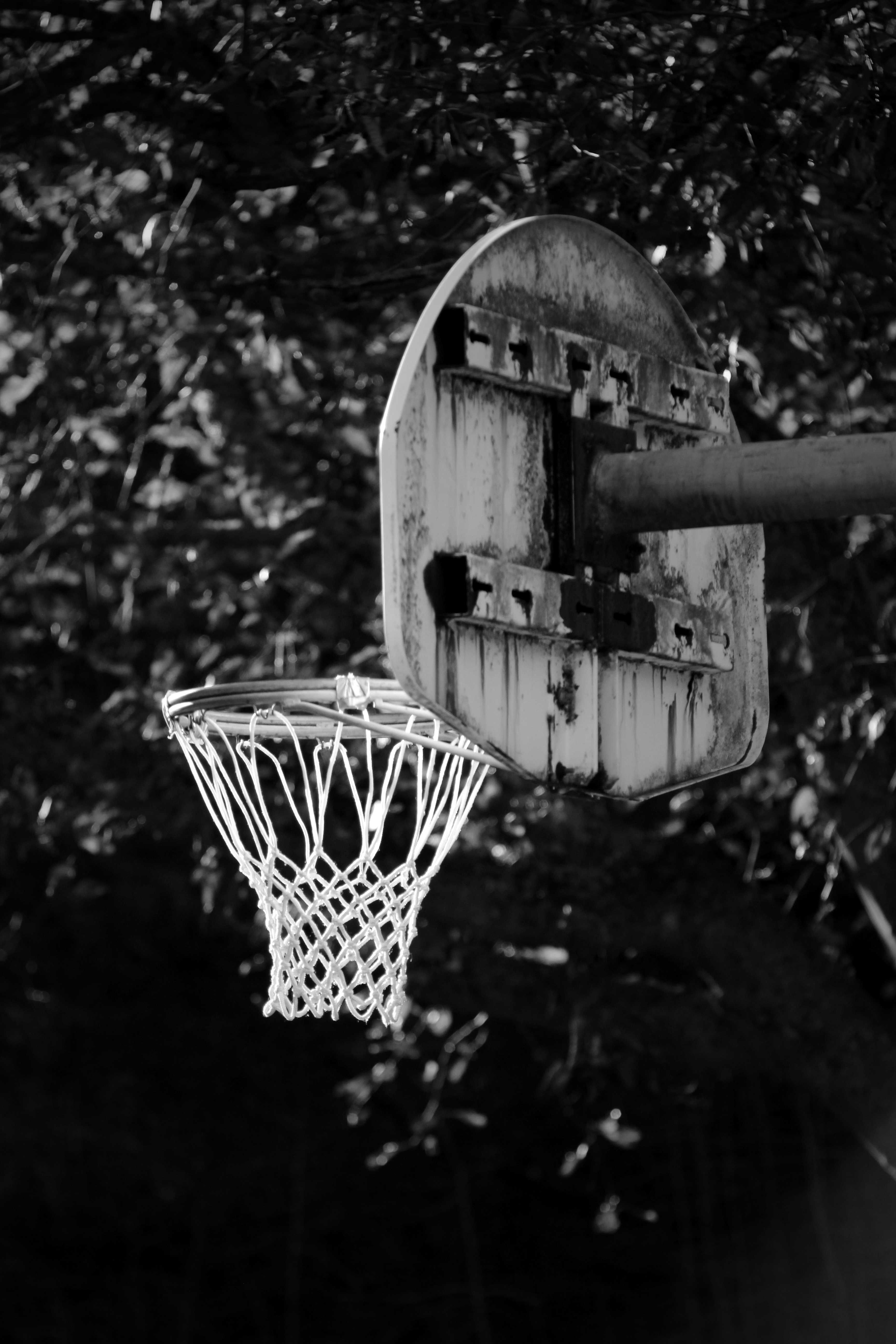 Day3: Black and White #1 Basketball / Discovery Park, Seattle