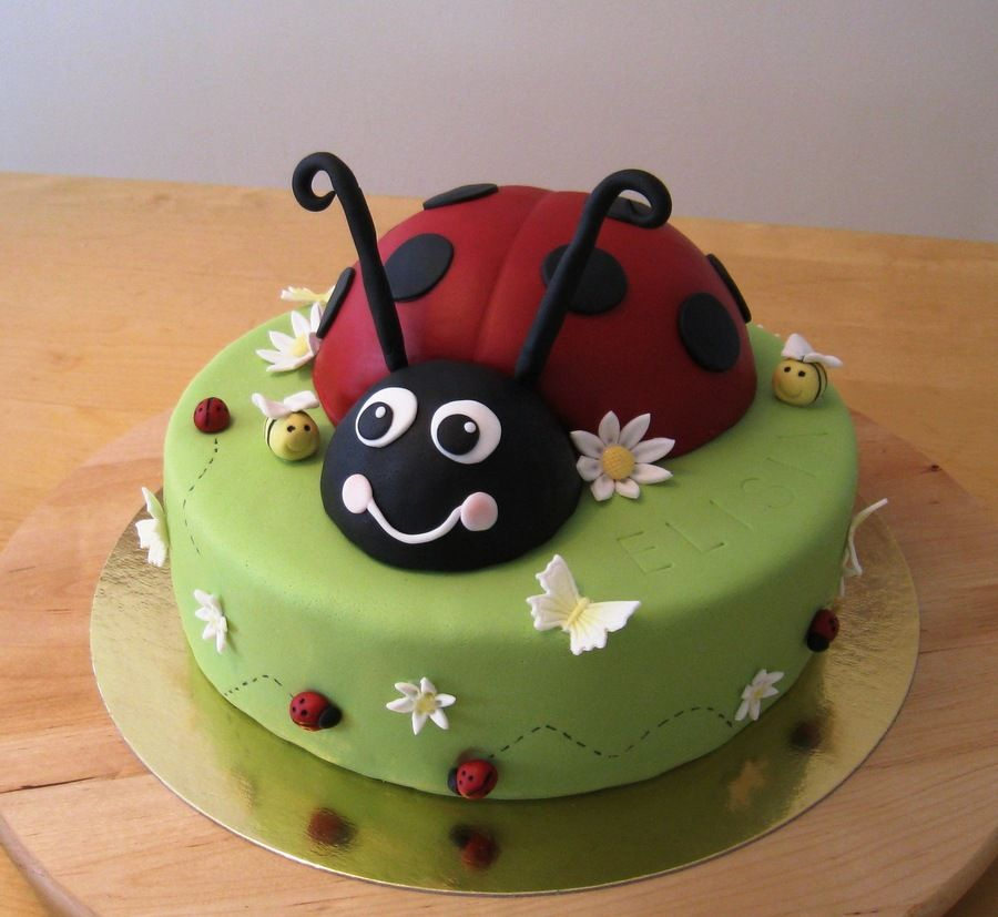 Ladybird Cake A ladybird cake for a 3 year old girl The ladybird is