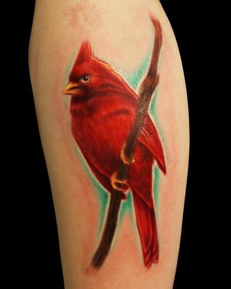 Pics For > Cardinal Tribal Tattoo