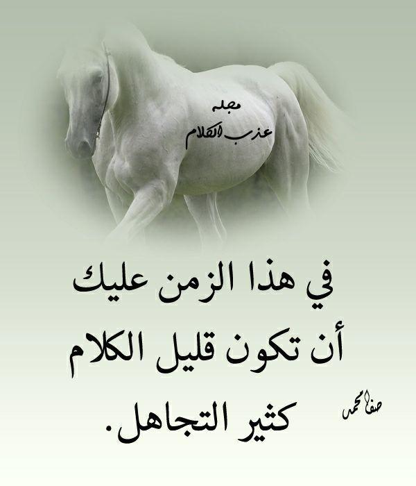 قليل الكلام كثير التجاهل Arabic Quotes Arabic Words Words