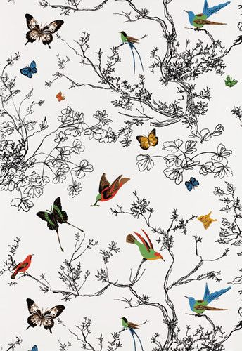 Birds and Butterflies Wallpaper by Schumacher eclectic