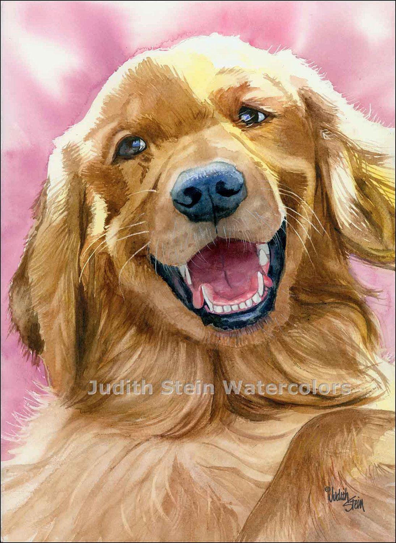 Golden Retriever Watercolor By Judith Stein Golden