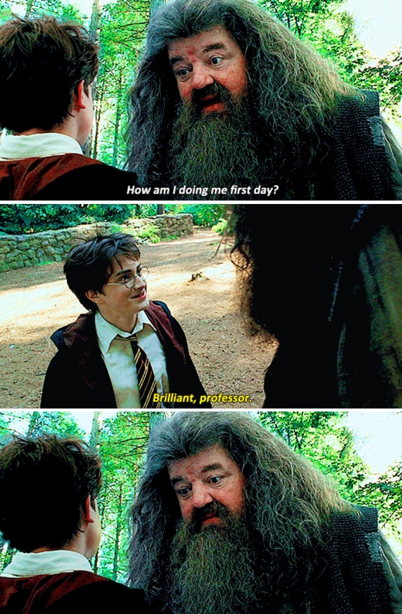 I Love How Hagrids Face Is Like God Bless You Little Cinnamon Roll Harry Potter Universal Harry James Potter Harry Potter Love