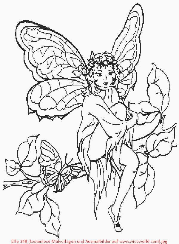 Pin On Fairies