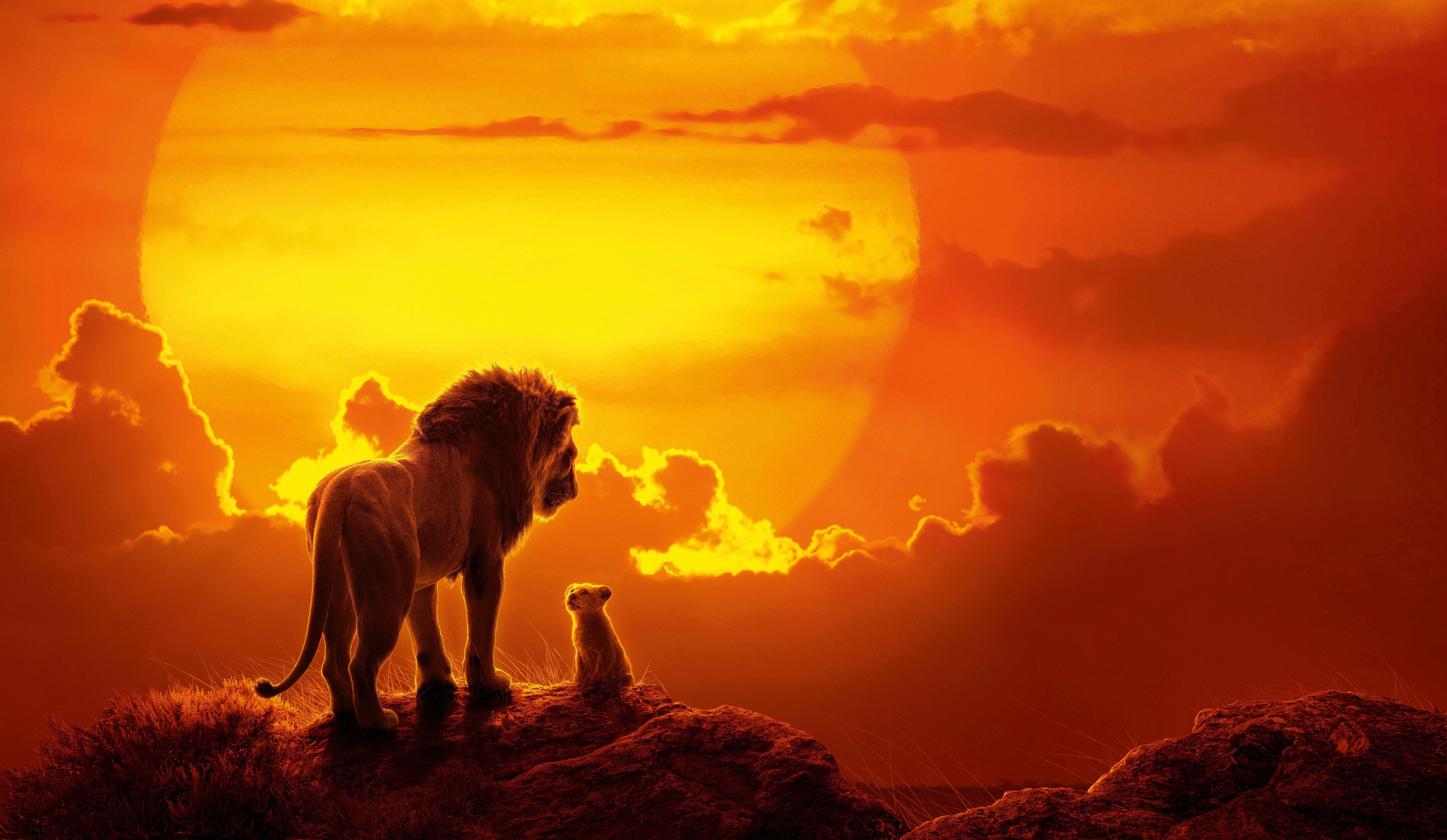 Lion King Sunset 3840x2160 In 2020 Lion Wallpaper Disney Desktop Wallpaper Wallpaper Iphone Disney Princess