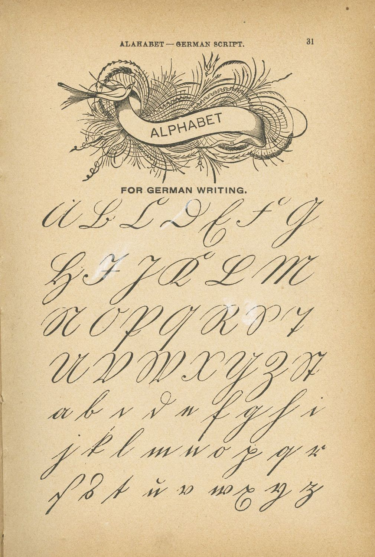 Mudbay Images Ornamental Antique Penmanship Penmanship Handwriting Analysis Cursive Writing