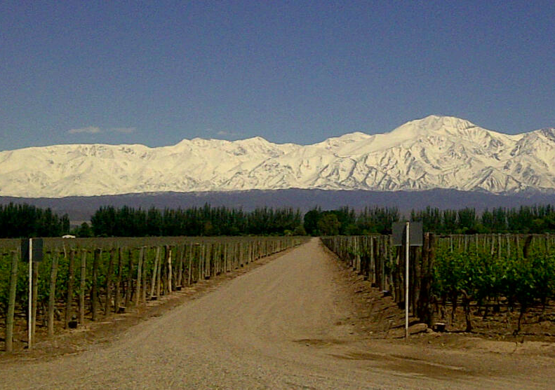 Explore the wine country of Malbec on a cycling journey through Mendoza! The landscape from the beautiful Catena Zapata winery is a stunning sight not to be missed.