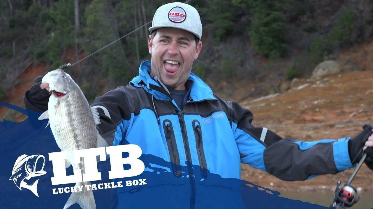 Bass Fishing Facts and More… Bass fishing, Bass fishing