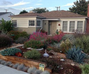 Small Xeriscaping On A Tight Budget Native Plant Gardening Xeriscape Front Yard Xeriscape California