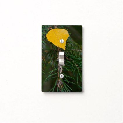 Yellow Aspen Leave on Evergreen Branch Photograph Light Switch - leave templates