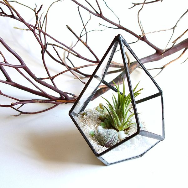 A Spring Ready Garden Deco Plantes Interieur Terrarium Suspendu