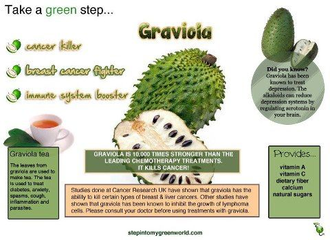 Graviola aka sour sop aka guanabana Health Pinterest Health
