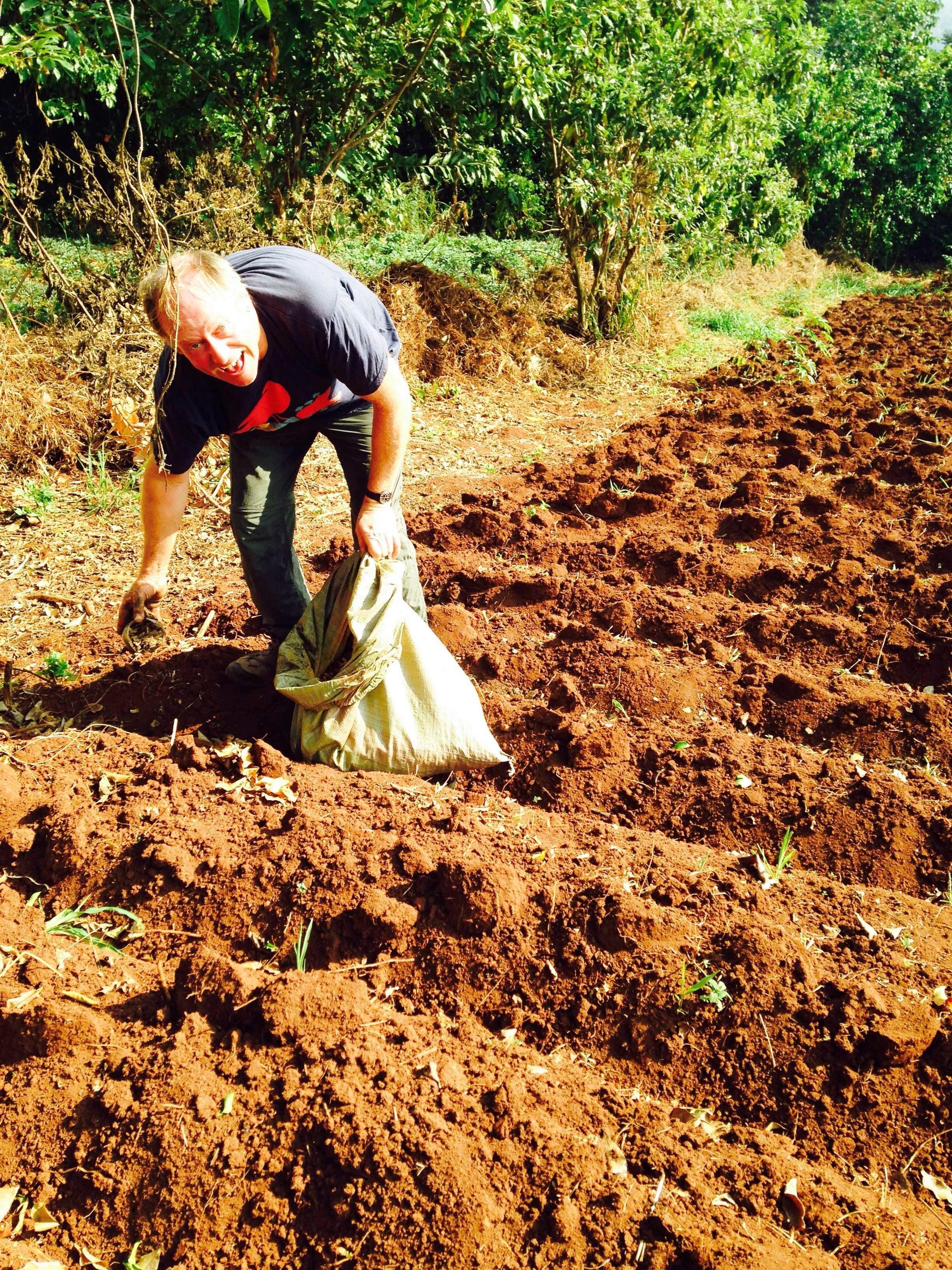 Phil is spreading manure to prepare the soil for planting beans!