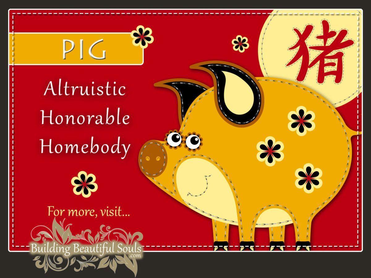 Chinese Zodiac Pig Boar Year of the Pig Boar