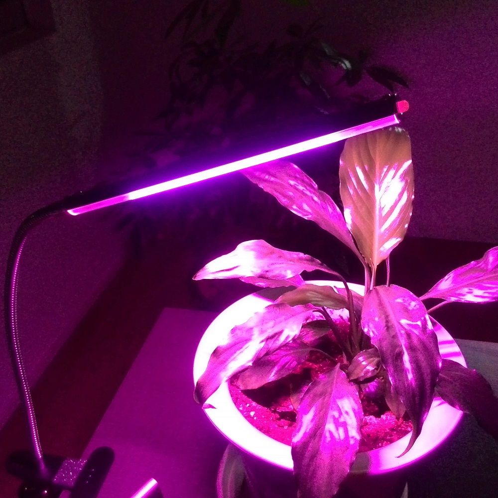 Flexible usb clip on led plant grow lamp for plants vegs flexible usb clip on led plant grow lamp for plants vegs hydroponic system grow parisarafo Gallery