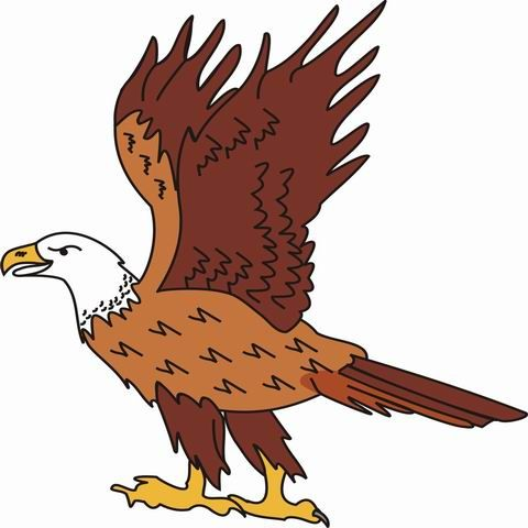 Eagle Coloring Pages For Kids, Toddlers, Kindergarten To Color And Print.  Find Free Printable Eagle Coloring Pages For Coloring Activities.