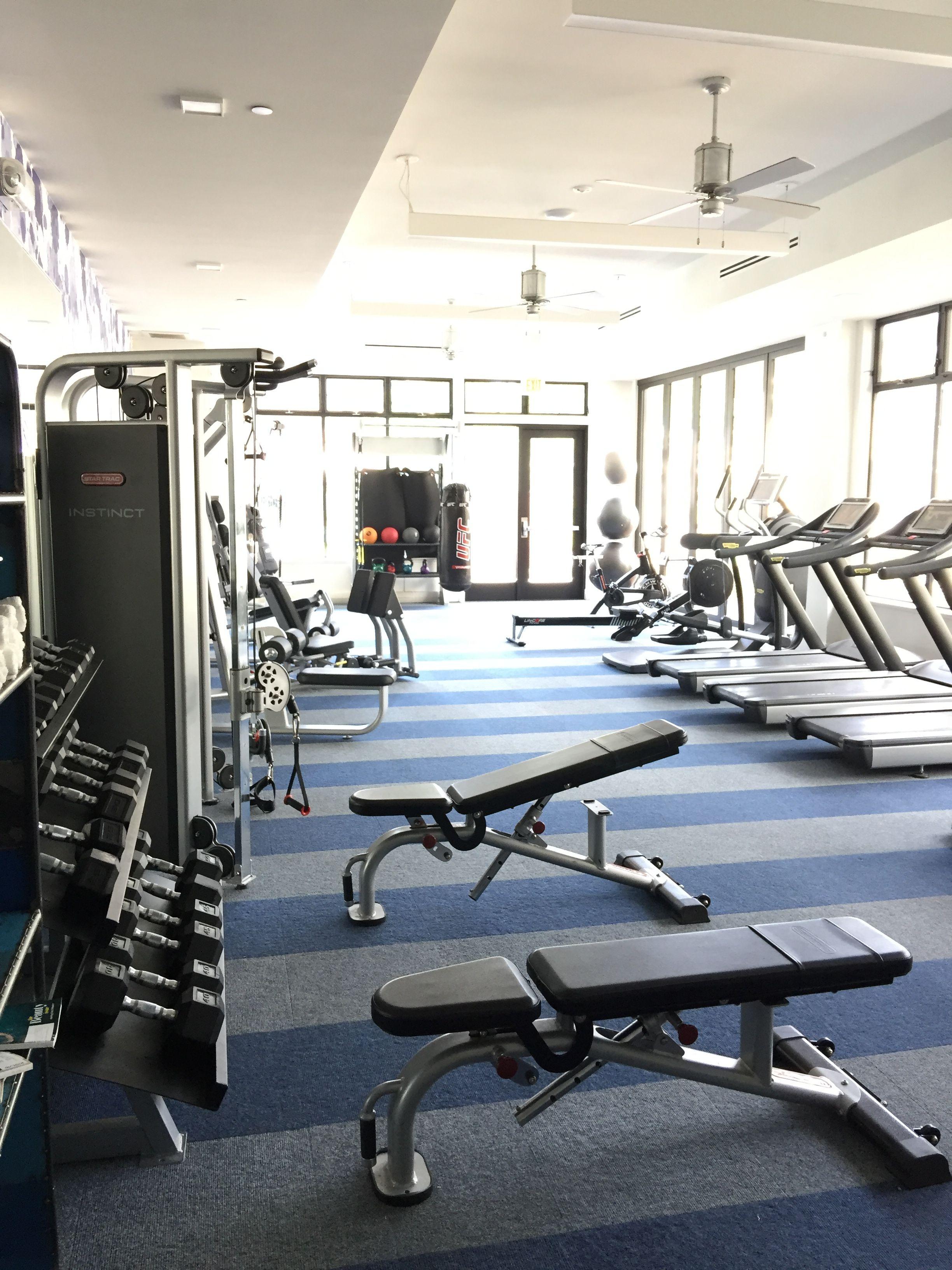 Pin by albee lee on prometheus gym equipment treadmill gym