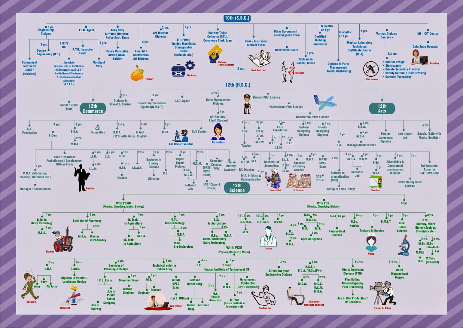 Image Result For After 12 Science Career Chart