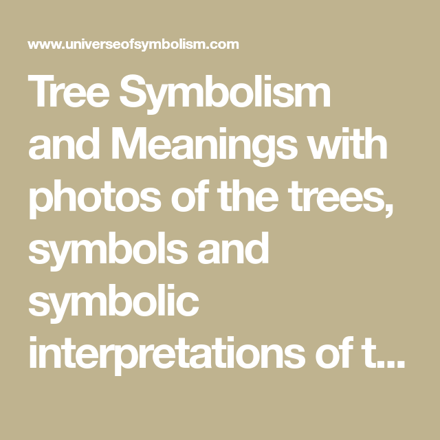 Tree Symbolism And Meanings With Photos Of The Trees Symbols And