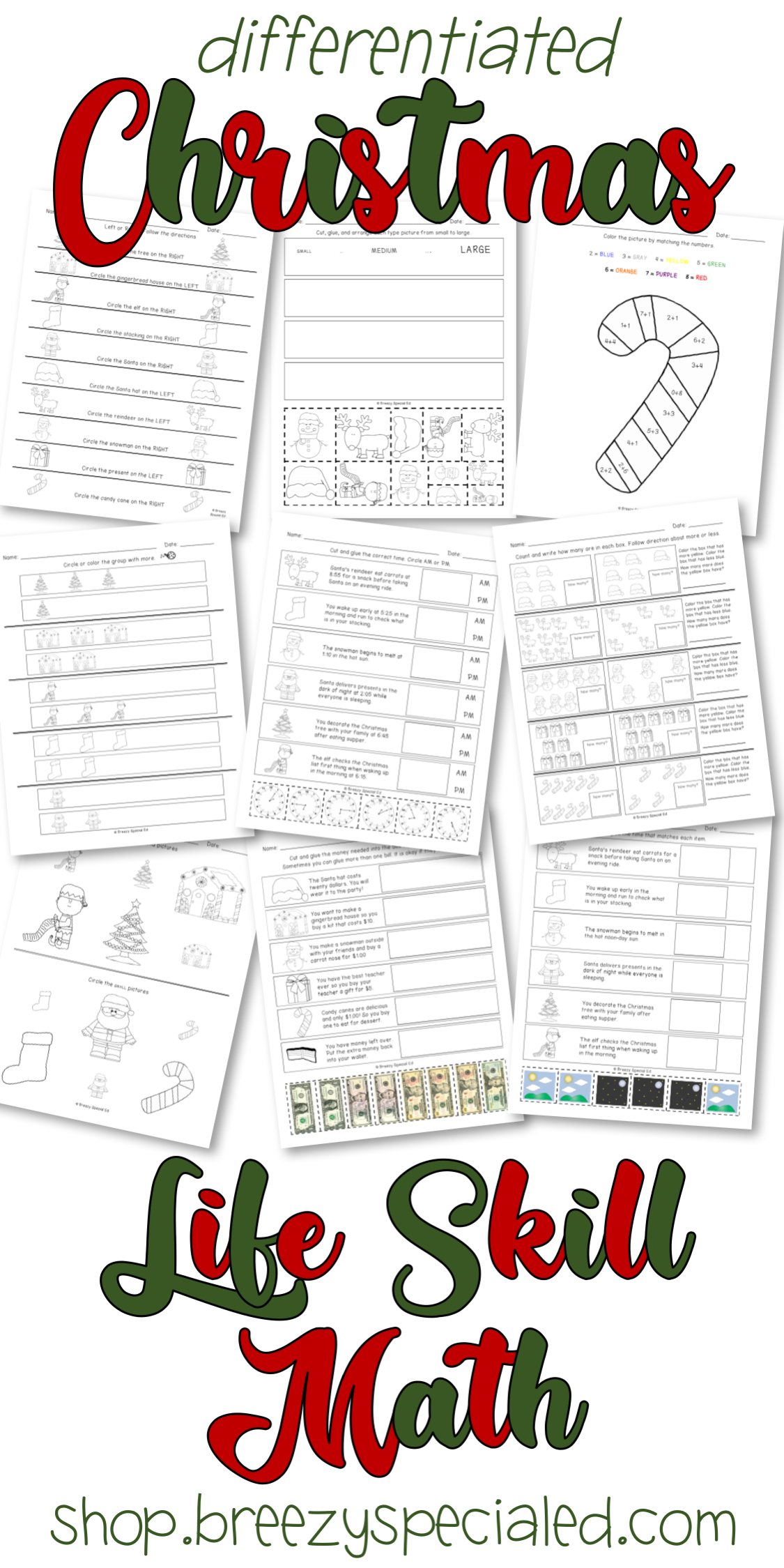 Christmas Differentiated Life Skill Math Pack Special