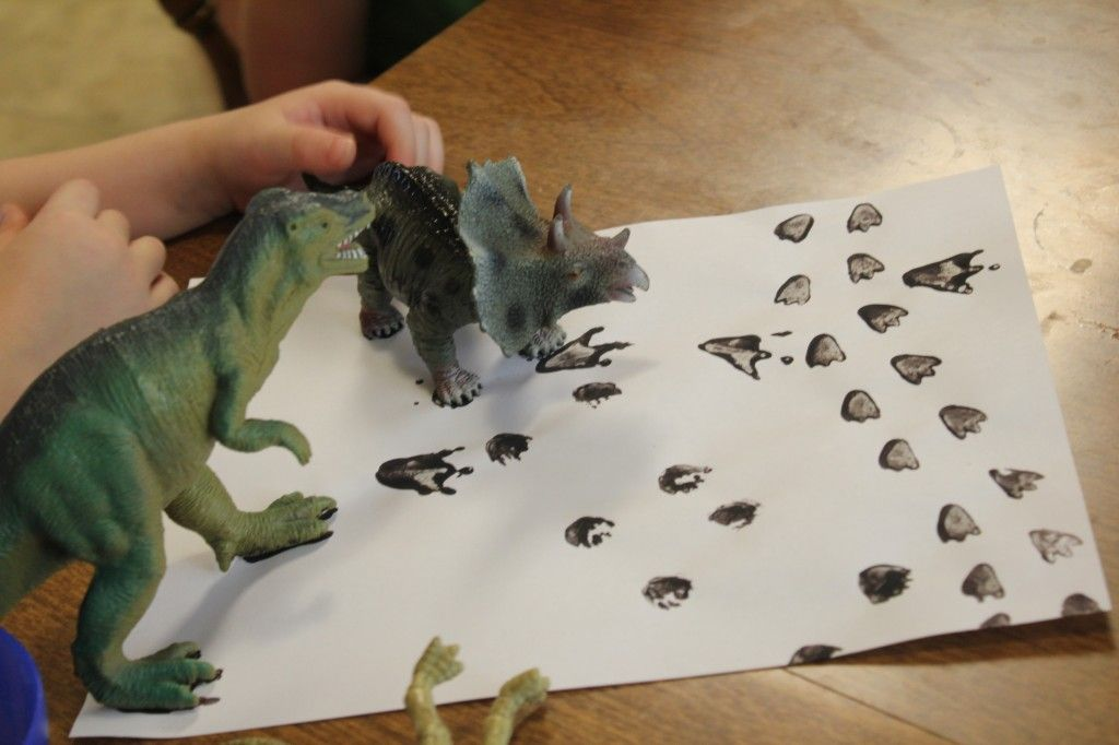 Dinosaur Tracks Matching Activity