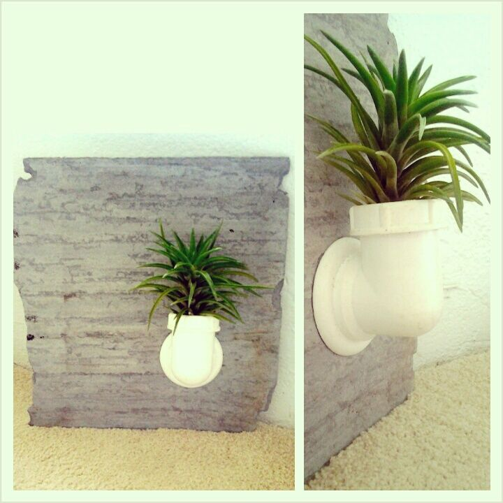 Pvc Garden Projects: DIY UpCycled Roof Tile And PVC Pipe Air Plant Hanging