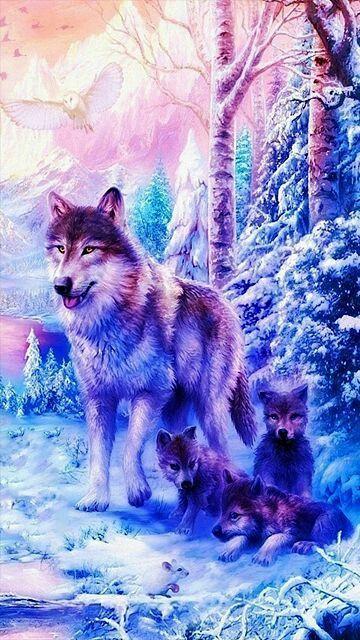Wolves Galaxy Cute Husky Wallpaper Novocom Top