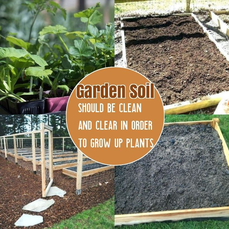 How To Prepare Soil For Gardening With Images Healthy Garden