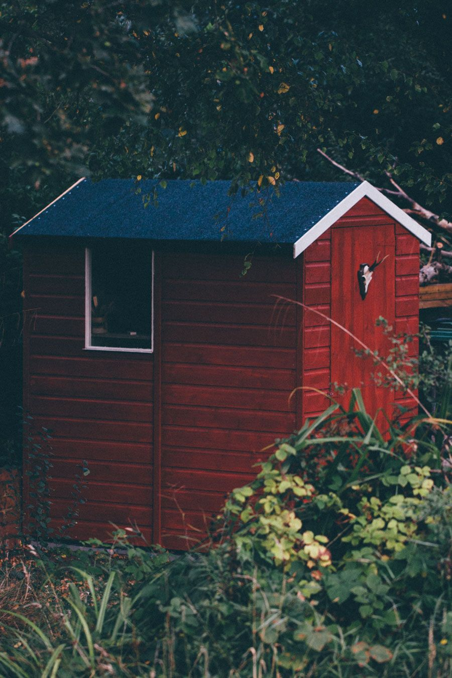 Incroyable Garden Shed Makeover