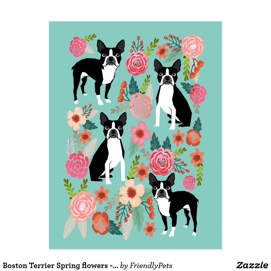 Boston Terrier Spring flowers -cute boston terrier Card | Cat N Pet ...