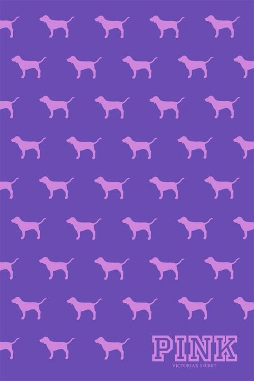 the pink dog