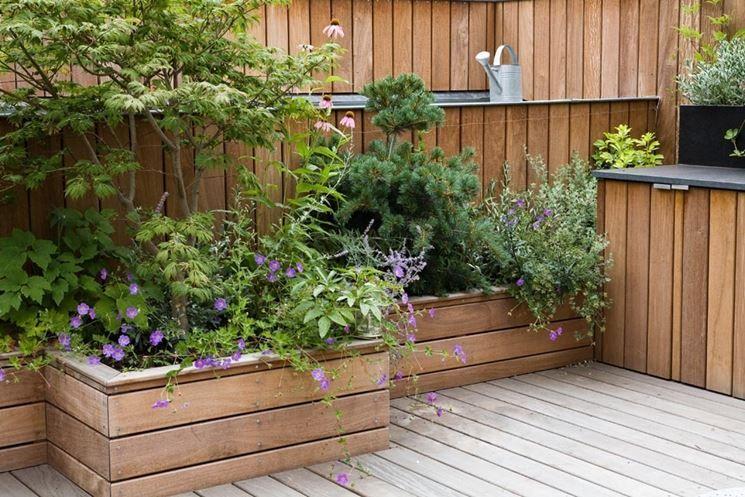 Risultati immagini per piante per terrazzo | Sảnh hiên nhaf ...