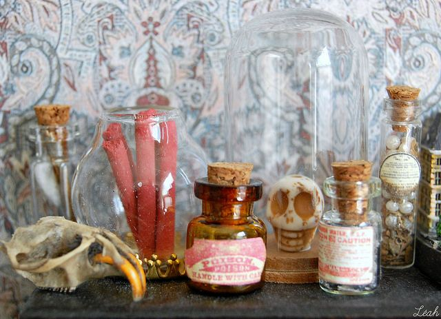 The Cabinet of Curiousities by Léah | Flickr - Photo Sharing!