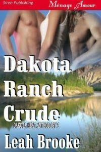 Românticos e Eróticos  Book: Leah Brooke - Dakota Heat #1 a #4