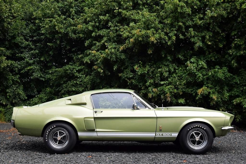 Ford Mustang Shelby GT500 6.0 2dr | Muscle Cars | Pinterest | Ford ...