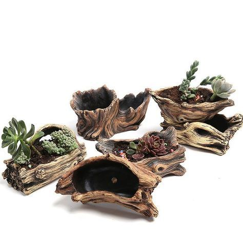 Wood Succulent Planter, Root Carving, Succulent Planter, Succulent Planter, Rustic Wood Display Box, Shelf Accessory, Desk Accessory