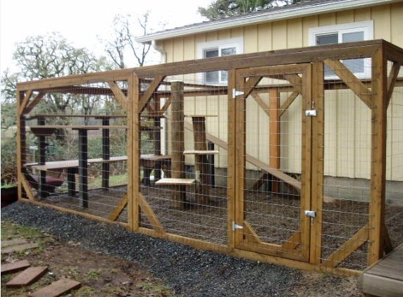 Another outdoor cat enclosure that we could build for the ...