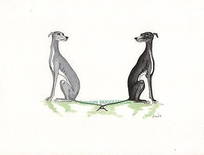 Whippet greyhound Dog Lurcher House  Watercolor//ink  painting  By Bridgette Lee