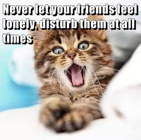 Photo of Never let your friends feel lonely