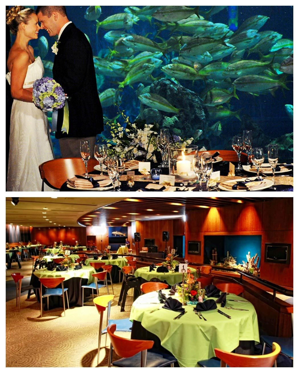 Looking For Way To Have An Adult Disney Wedding Check Out The Living Seas Salon
