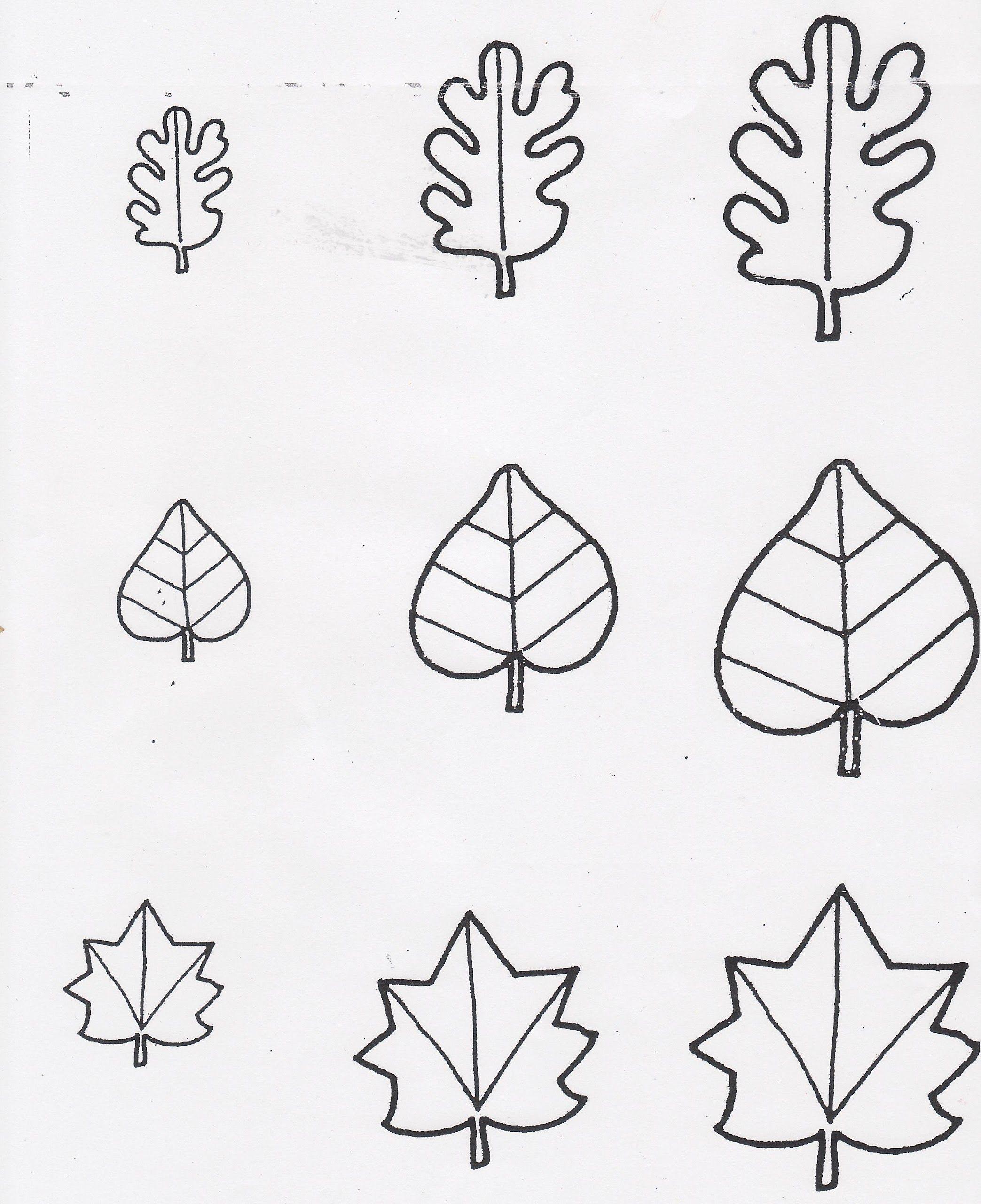 Leaf Sorting