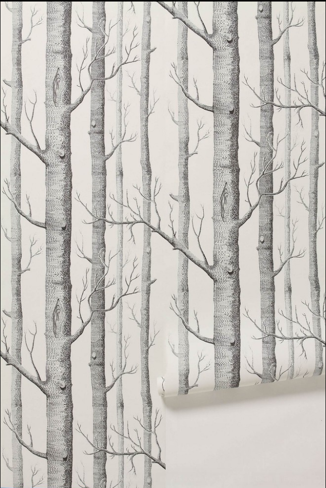 The famous Woods wallpaper. This comes in many, many colors. My friend has this in a small foyer--amazing.
