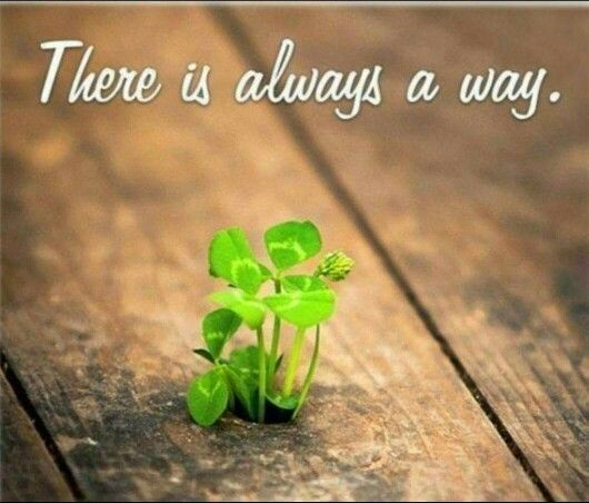 There is always a way ✌✌✌